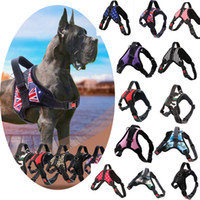 Wholesale Dog leash Medium and large dog chain anti explosion chest strap for walking dog rope pet supplies