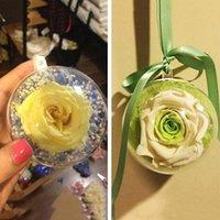 ingrosso scatole di ornamento favorevoli-20pcs 10cm New Christmas Ornament Albero favore regalo Candy trasparente Trasparente Ball Box / Pet Toy