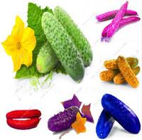 Wholesale vegetables japanese - Rare Colorful Japanese Cucumber Seeds Fruit Vegetables Seeds For Garden Plants Bonsai Sementes Semillas de Verduras-100 Pcs Bag