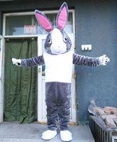 Wholesale High Quality Rabbit Costume - High quality EVA Material Helmet Super soft fabric rabbit Mascot Costumes Unisex cartoon Apparel WS161