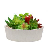 bitki kutusu tasarımları toptan satış-MUZHI 6.7 inç Bitki Fiber Yuvarlak Etli Kaktüs Ekici Tencere, Silindirik Modern Tasarım Dekoratif Bahçe Çiçek Kase Etli Kutusu