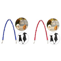 Wholesale leash training puppies resale online - Two Dogs Use Practical Waking Pets Leashes Puppy Training Anti Winding Practical Pull Rope Stretchy Dog Leash New sm Z