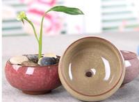 Wholesale Ceramic Chinese Flowers - arden Planters Flower Pots Planters 50Pcs Lot Microlandschaft Mini Succulent Plants Flowers Vase Flowerpot Terrarium Container Mini Bonsa