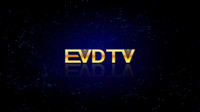Wholesale Android Channel - EVDTV HAY IPTV France IPTV Turkey ARABIC TV Netherlands 3000 Channels VOD EPG working on Smart tv android tv box MAG250 254