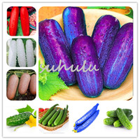 Wholesale vegetables japanese - 100 Pcs Long Straight Cucumber Vegetable Seeds Red Purple Green White Japanese Long Cucumber Seed Non-Gmo Vegetable Seeds Home &Garden Plant