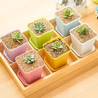 mini-desktop-bonsai großhandel-Garten Mini Kunststoff Blumentöpfe + Kunststoffschale Vase Platz Blume Bonsai Pflanzer Kindergarten Töpfe Kreative Kleine Quadratische Töpfe Garten Liefert