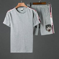 Wholesale cat suits - luxury designer brand summer for men clothes embroidery cat letter gray Tracksuits t-shirt shorts shirt breeches suit sportsuit tee