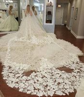 Wholesale 5m wedding veil - Amazing 5M One Layer Wedding Veils Lace Appliqued Long Cathedral Length Veils Custom Made Tulle Ivory Bridal Veil
