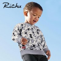 Wholesale Kids Character Sweatshirts - Richu cartoot animal boy sweatshirt kids t shirt hoodies toddler baby clothing sweatshirts child christmas products O NECK T SHIRTS tops
