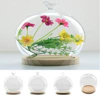 mikrobehälter groihandel-Tabletop Vase Ball Shaped Glasabdeckung Micro Landschaft Fairy Garden Diy Display Terrarium Vase Container Home Cafe Decor