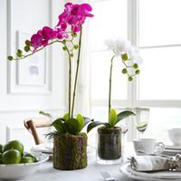 küçük yapay çiçekli bitkiler toptan satış-Çiçek Miz 1 Adet Yapay Çiçek Küçük Boy Phalaenopsis Ev Dekorasyon Bahçe Bitkileri Yapay Phalaenopsis için Saksı Bitkileri