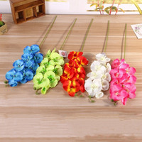 Wholesale Plastic Flowers Orchid - Simulation Moth Orchid Decorative Flowers DIY Artificial Plastic Silk Flower Multi Colors Lifelike Bouquet Hot Sale 2 6lx B