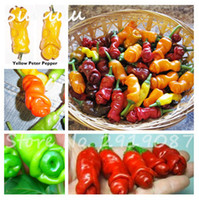 Wholesale Red Hot Chili Peppers - 200 Pcs Penis Chili Red Hot Peter Pepper Seeds The World Hottest Tasty Big Delicious Vegetables Seeds Most Funny Peppers Bonsai Plant Seeds