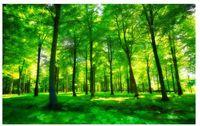 ingrosso sfondo della parete di foresta-3D Wallpaper Murale Decor Foto Sfondo Bella foresta di luce verde soggiorno TV sfondo muro decorazione pittura TV sfondo 3D Mu