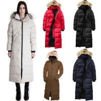 Wholesale women s velvet jacket online - Classic Style Popular Women Winter Full length Overcoat Goose Women Mystique Parka Goose Down Feather Jacket Big Coyote Fur Collar for Lady