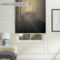 ingrosso tessuto scenico-MOMO Blackout Window Tende Tende a rullo Tende Tende con isolamento termico Tessuto Custom Scenic, PRB set180