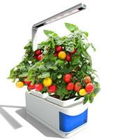 luces led para plantas al por mayor-CLAITE LED Luces de cultivo Interior Planta de espectro completo Lámpara Hierba Hidroponía Plantas Kit de jardín Lámpara Lámpara ajustable Palanca de siembra