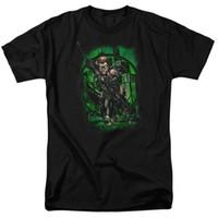flecha verde t shirts al por mayor-Green Arrow Emerald Archer EN MI VISTA Camiseta con licencia Todos los tamaños