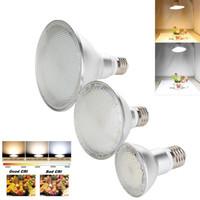 focos led de alta potência venda por atacado-E27 Regulável LED Spotlight Lâmpada 2835 SMD PAR20 PAR30 PAR38 14 W 24 W 30 W Quente Branco Lâmpada Brilhante Luz De Milho De Alta Potência