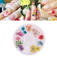 ingrosso piccoli fiori secchi-1 rotolo di fiori secchi per unghie decorazione di arte del chiodo punte fai da te caso piccoli fiori unghie 18 pezzi accessori secchi di arte