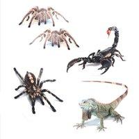 akrep çıkartmaları çıkartmaları toptan satış-50pcs / Lot 3D Araba Sticker Simülasyon Hayvanlar Tampon Güçlendirme Çıkartma için Örümcek Gecko Scorpions Lizard Amblemi Car-Şekillendirme Karikatür Çıkartmaları
