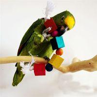papağan oyuncakları toptan satış-Eğlenceli Papağan Malzemeleri Kuşlar Gömme Blok Oyuncaklar Ile Pamuk Halat Doğal Ahşap Renkli Pet Tırmanma Çiğnemek Diş Oyuncak 5 5jd Ww