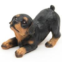 ingrosso ornamenti da giardino cane-2017 4 pz Resina Rottweiler Cani Micro Paesaggio Decor Pet Puppy In Miniatura Casa Giardino Ornamento Bonsai Terrario Figurine Home Decor