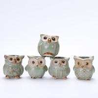 ingrosso piccoli vasi da fiori-300 PZ Carino mini gufo vasi da fiori per Piante Carnose Piccolo Ceramica Vaso Vaso home office Decor regalo carino Craft