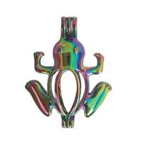 colgantes de cuentas de colores al por mayor-5 unids arco iris de color rana jaula de perlas joyería que hace suministros cuentas jaula colgante de aceite esencial difusor para la joyería de la perla de la ostra C173