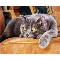 краска может изображать оптовых-Кошки картина diy картина маслом по номеру инструкции искусство может рисовать любой высокое качество пластиковых корпусов уважать цвет 40 * 50 см Сфера Ницца