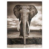 Wholesale Pictures Elephants - Diy Diamond painting set DRINKING ELEPHANT 30x40CM square diamond resin full rhinestone decoration rhinestone pasted picture zx