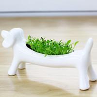 planta em vaso branco artificial venda por atacado-8 pcs Hot Branco Cerâmica Mini Dog Vaso De Flores Em Forma de Animal Vaso Plantadores Suculenta Flor Plantas Verdes Vasos Desktop Decorações
