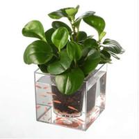 fischpflanzer großhandel-Selbstbewässerung Blumentopf Transparent Aquarium Aquarium Blume Pflanze Hydroponischen Pflanzer Topf Blume Pflanze Vase Dekoration