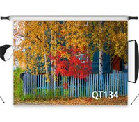 Wholesale fall photography backdrops for sale - Group buy Polyester amp Vinyl Autumn Blue Wooden Fence Yellow Fallen Leaves Backdrops Background For Photography Studio Backdrop Photo Props