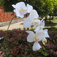 orquideas rosas artificiales al por mayor-Pantalla Flor Real Touch Orquídea Flor Falso Verde / Rosa Cymbidium Látex Orquídeas Phalaenopsis para Boda Flores Decorativas Artificiales