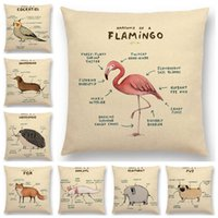 Wholesale Wholesale Anatomy - Cute Animals Anatomy Cushion Cover Dachshund Pug Dog Cat Fox Hedgehog Squirrel Goat Cow Rabbit Earthworm Cushion Covers Linen Pillow Case