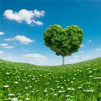 mavi çiçekli ağaç toptan satış-Aşk Kalp şeklinde Ağaç Sevgililer Günü Arka Planında Mavi Gökyüzü Bulutlar Yeşil Çayır Beyaz Çiçekler Bahar Scenic Düğün Fotoğrafçılığı Arka ...