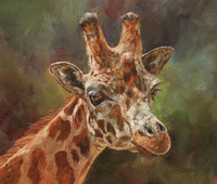 Wholesale wall art oil painting giraffe for sale - Group buy Artwork giraffe portrait Unframed Modern Canvas Wall Art for Home and Office Decoration Oil Painting Animal painatings frame
