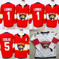 Florida Panthers Jersey 5 Aaron Ekblad 1 Roberto Luongo 16 Aleksander Barkov  2018-19 Season Hockey Jerseys IN STOCK b1e77f966
