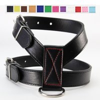 Wholesale leather dog collars leashes for sale - Currency Dog Collars Leashes PU Traction Rope Black Chest Straps Pet Supplies Accessories Harness Mascotas Eco Friendly lx3 bb