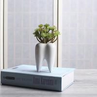 ingrosso mini piatto di fiori bianchi-1 pezzo dente forma bianco ceramica vaso di fiori design moderno fioriera denti modello mini desktop pentola regalo creativo (senza piante)