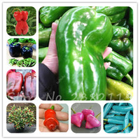 Wholesale Pepper Supplies - 200pcs bag rare shape chili seeds mixed different spices spicy pepper seeds non-gmo vegetable seeds garden supplies
