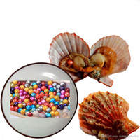 Wholesale Oyster Shell Jewelry - 2018 Akoya Red shell Oyster Pearl 6-7MM Round Pearl in Oysters Akoya Oyster Shell with Colouful Pearls Jewelry By Vacuum Packed Wholesale