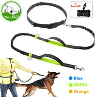 Wholesale Retractable Hands Free Dog Leash for Running Dual Handle Bungee Leash Reflective For Up to lbs Large Dogs Free Bag Dispenser