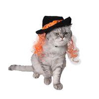 ingrosso cappello nero magico-Articoli per animali domestici Border Border Hot Dress Up Cool Cat Jewelry Black Wig Tie Teddy Magic Wizard Hat