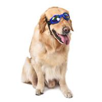 dog sunglasses оптовых-Оптовая зоомагазин Pet солнцезащитные очки Шарм собака уход очки Pet аксессуары одеваются как прохладный мода негабаритных мягкий