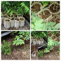 ingrosso piante per giardino balcone-10 tipi di dimensioni Felt Plants Borse non tessute Giardino Balcone Fiori verdi Vivaio Verdure Mini sacchetti bianchi