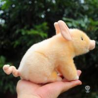 ingrosso bambino gioca animali selvatici-Giocattoli di peluche carino Bambola di maiale Bama Sutfed giocattolo animale bambole di cinghiale selvaggio regalo di compleanno