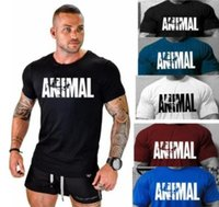 Wholesale shirt muscle xxl online – design 2018 Mens Casual Slim Fit Crew Neck Shirt Jumper Pullover Sweater Muscle T Shirts Tops Colors Big Size XXL