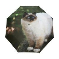 gatos guarda-chuva venda por atacado-Gato Birman Impresso Guarda-chuva Automático Moda Pintura Parasol Guarda-sóis Sol / Chuva Mulheres Homens Chuva de Chuva Dos Homens 3 Dobrável